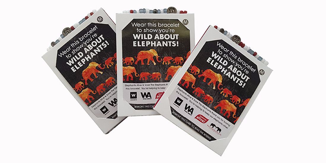 Relate Bracelets and Woolworths Get Wild about Elephants